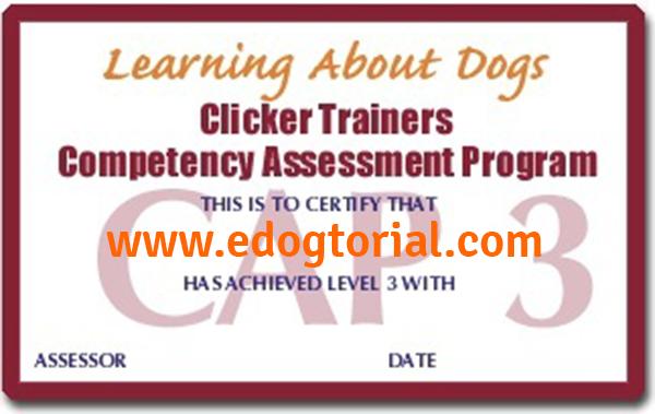certificado CAP3