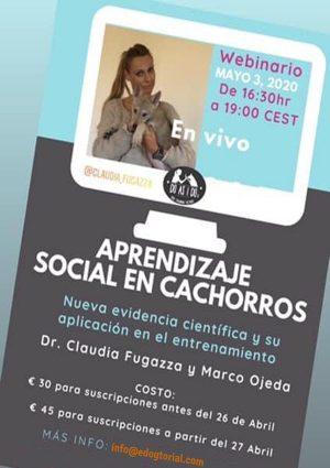 Webinar con Claudia Fugaza sobre aprendizaje social