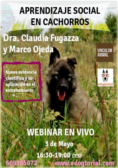webinar cachorros Claudia Fugazza