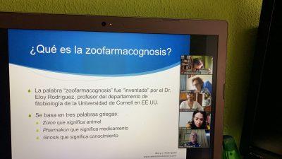 seminario online de zoofarmacognosis con Mary Rodríguez