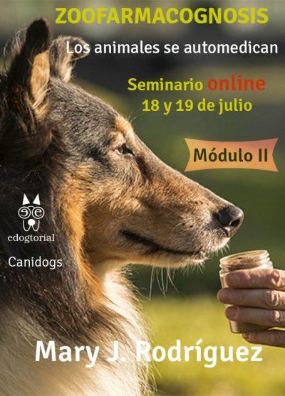 Módulo 2 online de zoofarmacognosis con Mary Rodríguez