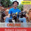 """El perro del siglo XXI. ROBERT LLORENTE """"BUIXITS"""""""