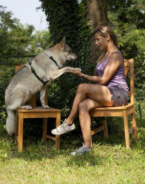 Claudia Fugazza en silla dando la mano a perra