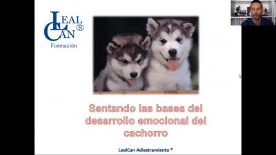 Diapositivas Desarrollo emocional del cachorro.