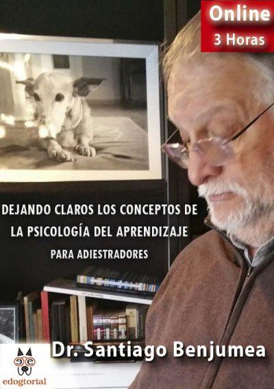 Dejando claros los conceptos de la psicología del aprendizaje. Santiago Benjumea.