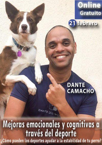 Mejoras emocionales y cognitivas a través del deporte canino.Webinario Dante camacho.