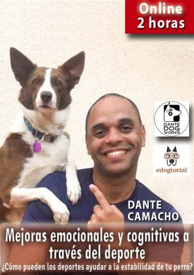 Mejoras emocionales y cognitivas a través del deporte. Dante Camacho.