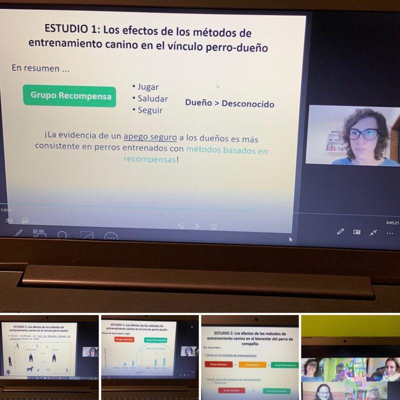Estudios científicos sobre bienestar canino. Catarina Vieira de Castro