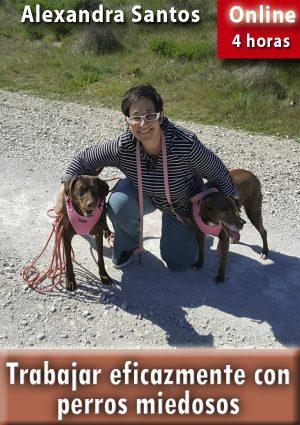Trabajar eficazmente con perros miedosos. Alexandra Santos.