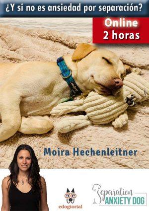 ¿Y si no es ansiedad por separación?Moira Hechenleitner