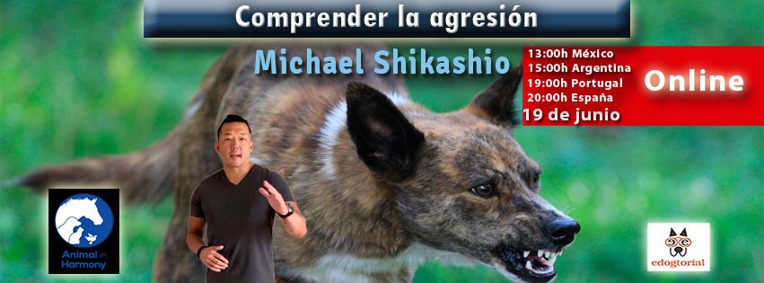 COmprender la agresión para poder ayudar a los perros. Michael Shikashio