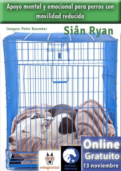Apoyo mental y emocional con Siân Ryan