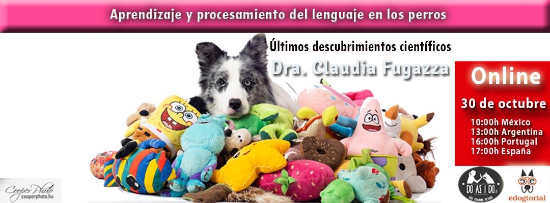 Aprendizaje y procesamiento del lenguaje. Claudia Fugazza.
