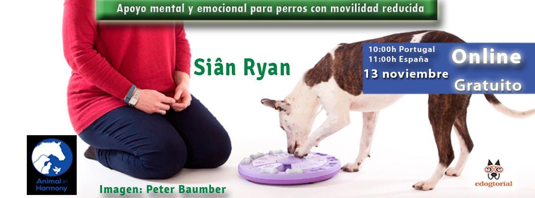 Apoyo mental y emocional par aperros con movilidad reducida. Sian Ryan.